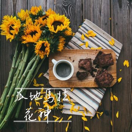 花神(中深焙/水洗AA)濾掛咖啡10GX10包/盒