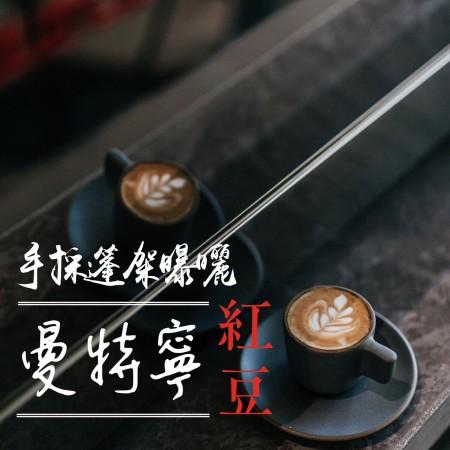 黃金曼特寧紅豆/金色森林(水洗G1)咖啡豆225G