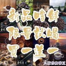 (新品試賣/買一送一)薇薇特南果/中深焙咖啡豆225G