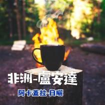 (買一送一)盧安達-阿卡蓋拉(日曬G1)咖啡豆225G